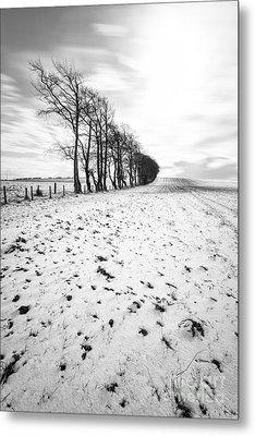 Trees In Snow Scotland II Metal Print by John Farnan