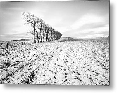 Trees In Snow Scotland V Metal Print by John Farnan