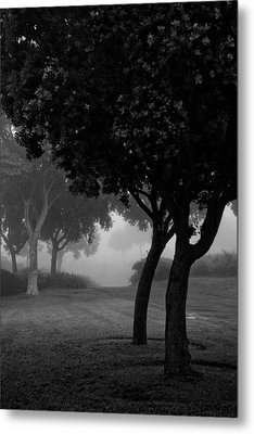 Trees In The Midst 1 Metal Print