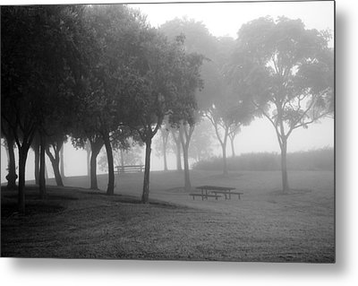Trees In The Midst 3 Metal Print