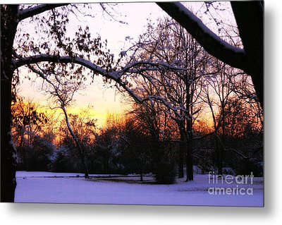 Trees In Wintry Pennsylvania Twilight Metal Print by Anna Lisa Yoder
