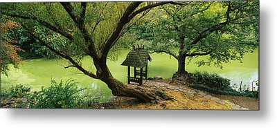 Trees Near A Pond, Central Park Metal Print