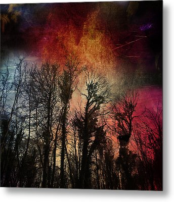 Trees No.7  Metal Print by Andy Walsh