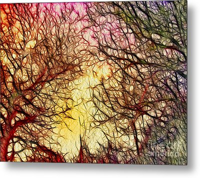 Trees Of The Four Seasons Metal Print by Kaye Menner