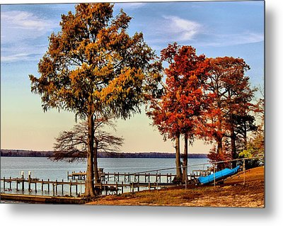 Trees On The Riverbank Metal Print by Carolyn Ricks