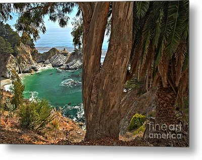 Trees Over Mcway Falls Metal Print by Adam Jewell