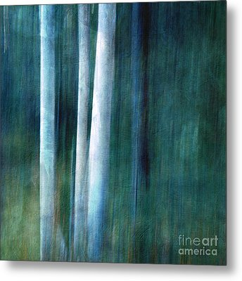 The Woods Are Lovely Dark And Deep Metal Print by Priska Wettstein