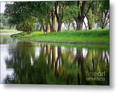 Trees Reflection On The Lake Metal Print by Heiko Koehrer-Wagner