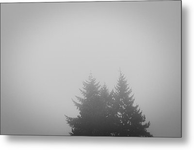 Treetops In Fog Metal Print
