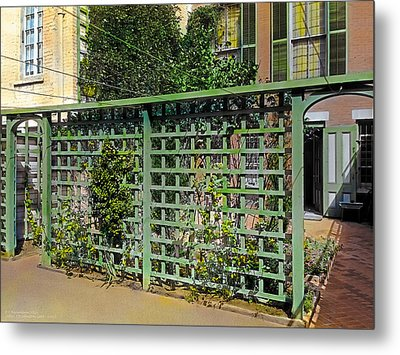 Trellis Metal Print by Terry Reynoldson