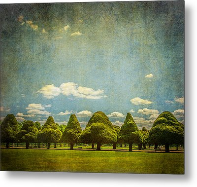 Triangular Trees 003 Metal Print by Lenny Carter