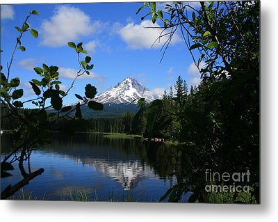 Trillium Lake With Mt. Hood  Metal Print
