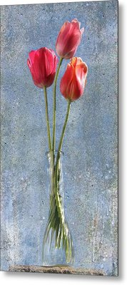 Trio Metal Print by Terri Harper