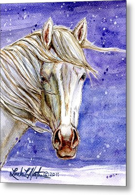 Tripod Wild Stallion Of The Sand Wash Basin Metal Print