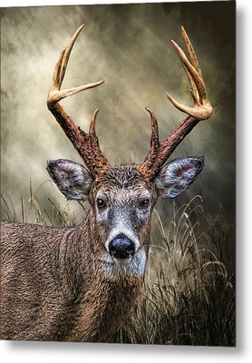 Metal Print featuring the digital art Trophy 10 Point Buck by Mary Almond