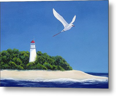 Tropic Bird Metal Print