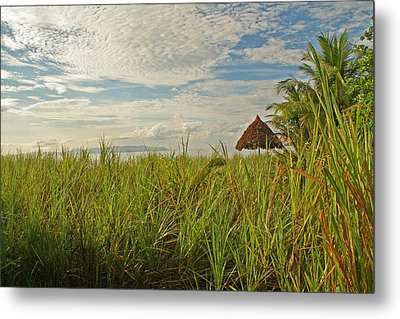 Metal Print featuring the photograph Tropical Beach Landscape by Peggy Collins