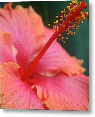 Tropical Beauty Metal Print by Kathy Yates