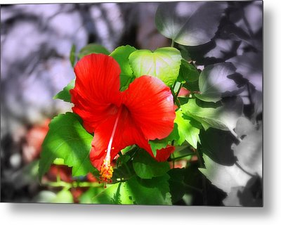 Tropical Burst Metal Print