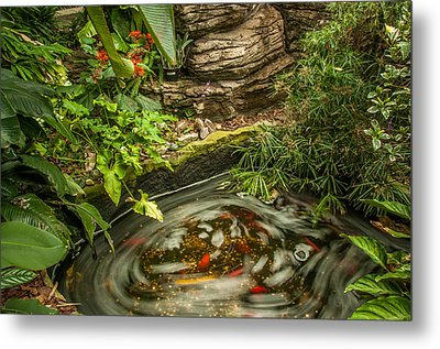 Tropical Koi Pond Swirl Metal Print