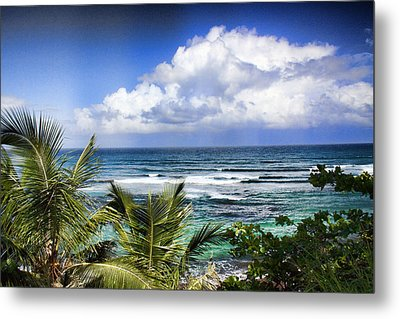Tropical Dreams Metal Print