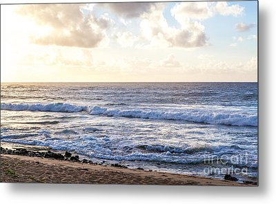 Metal Print featuring the photograph Tropical Morning  by Roselynne Broussard