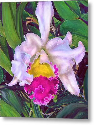 Tropical Orchid Metal Print by Jane Schnetlage
