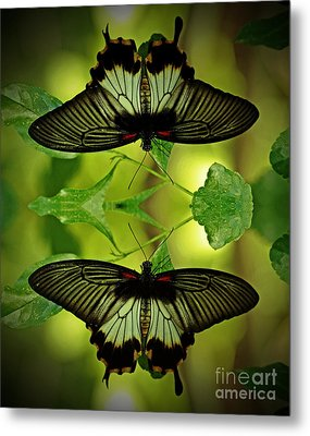 Tropical Paradise Metal Print by Inspired Nature Photography Fine Art Photography
