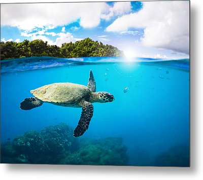 Tropical Paradise Metal Print by Nicklas Gustafsson