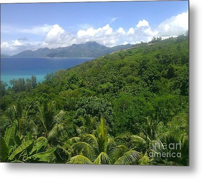 Tropical Seychelles Metal Print by Ted Williams