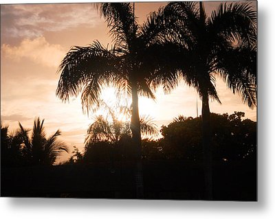 Tropical Sunrise Metal Print by Mustafa Abdullah