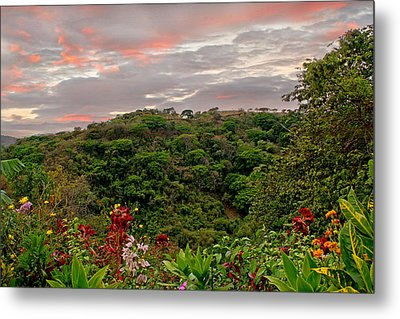 Metal Print featuring the photograph Tropical Sunset Landscape by Peggy Collins