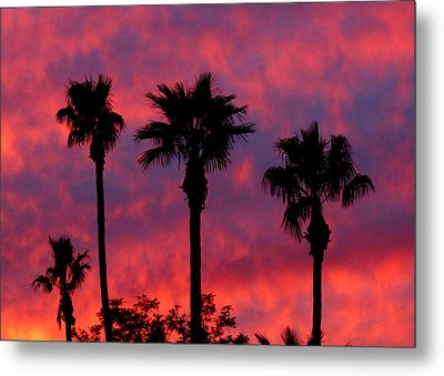 Tropical Sunset Metal Print by Laurel Powell