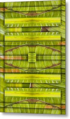 Tropical Three Metal Print by Carol Leigh