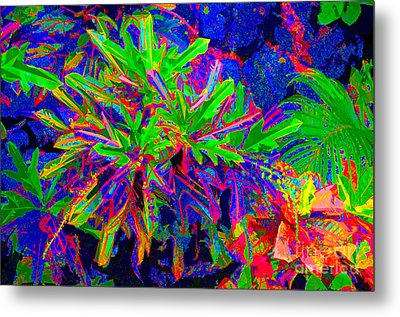 Metal Print featuring the photograph Tropicals Gone Wild by David Lawson