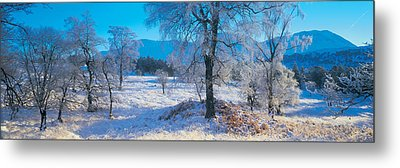 Trossachs National Park, Scotland Metal Print by Panoramic Images