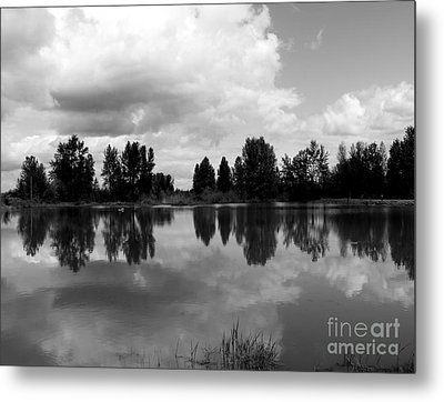 Trout Pond Reflection Metal Print by Erica Hanel