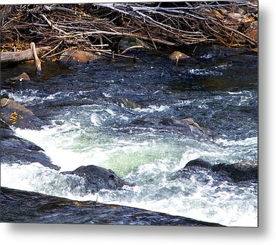 Metal Print featuring the photograph Trout River by Jackie Carpenter