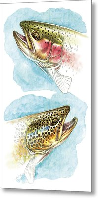 Trout Study Metal Print by JQ Licensing