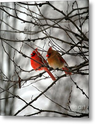 True Love Cardinal Metal Print