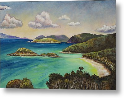Trunk Bay Overlook Metal Print by Eve  Wheeler