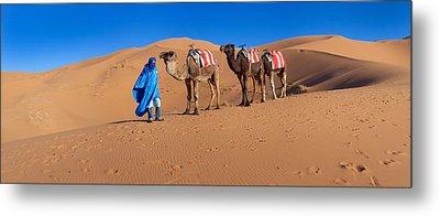 Tuareg Man Leading Camel Train Metal Print