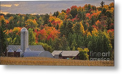 Tucked Away In Autumn Metal Print