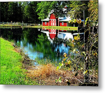 Tucked Away Metal Print by Tina M Wenger
