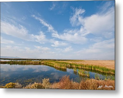 Metal Print featuring the photograph Tule Lake Marshland by Jeff Goulden