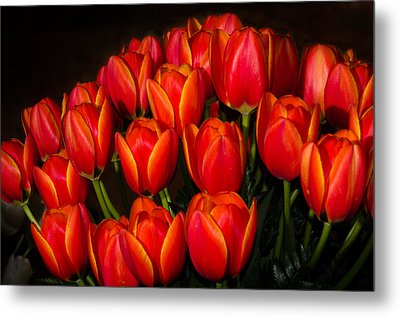Tulip Bouquet Metal Print by Brian Xavier