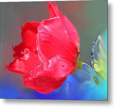 Tulip Metal Print by Kume Bryant