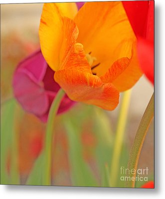 Tulip Time Metal Print