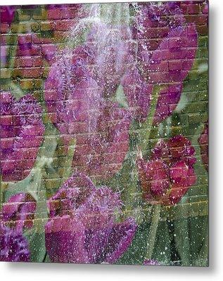 Tulip Waterfalls Metal Print by Penny Lisowski