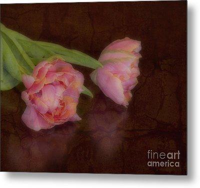 Tulips Metal Print by Alana Ranney